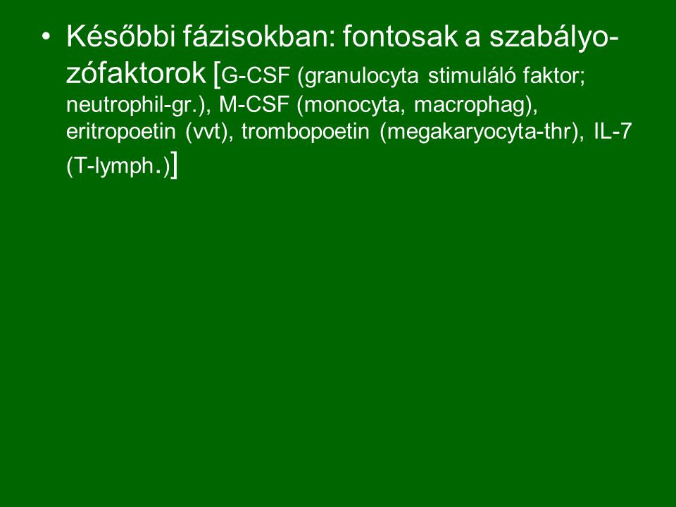 Későbbi fázisokban: fontosak a szabályo-zófaktorok [G-CSF (granulocyta stimuláló faktor; neutrophil-gr.), M-CSF (monocyta, macrophag), eritropoetin (vvt), trombopoetin (megakaryocyta-thr), IL-7 (T-lymph.)]